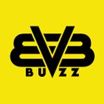 bvbbuzz.com