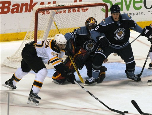 Bruins Panthers Hockey
