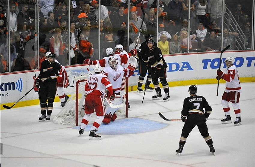 Red Wings Ducks