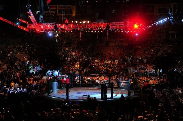 Oct. 29, 2011; Las Vegas, NV, USA; Overall view of the chain link fence of the octagon ring during UFC 137 at the Mandalay Bay event center. Mandatory Credit: Mark J. Rebilas-USA TODAY Sports