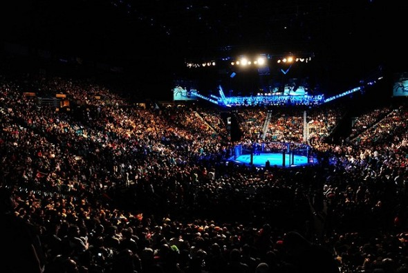 Dec 30, 2011; Las Vegas, NV, USA; Overall view of the octagon ring during UFC 141 at the MGM Grand Garden event center. Mandatory Credit: Mark J. Rebilas-USA TODAY Sports