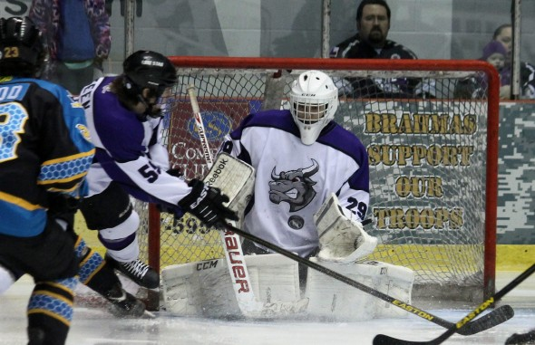 Photo Courtesy of David Dudich: TJ Black again played well in net, but was victimized by two Killer Bees power play goals in the second period as the Brahmas lost 2 - 0.