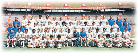 1972 Dolphins