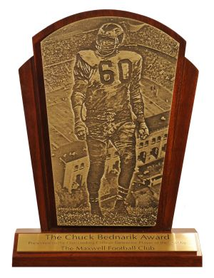 The Bednarik Award