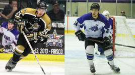 The Birth Of The Texas Tornado / Lone Star Brahmas And The NAHL South