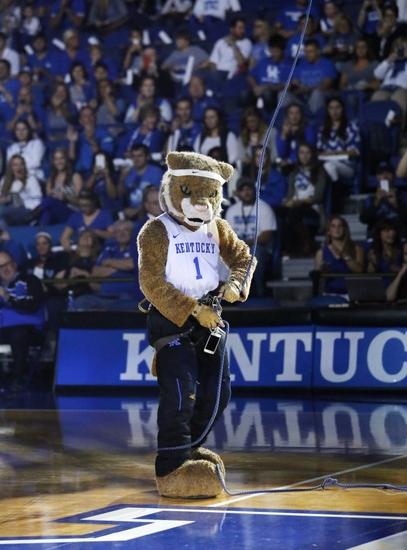 Big-blue-madness-ncaa-basketball-kentucky-big-blue-madness