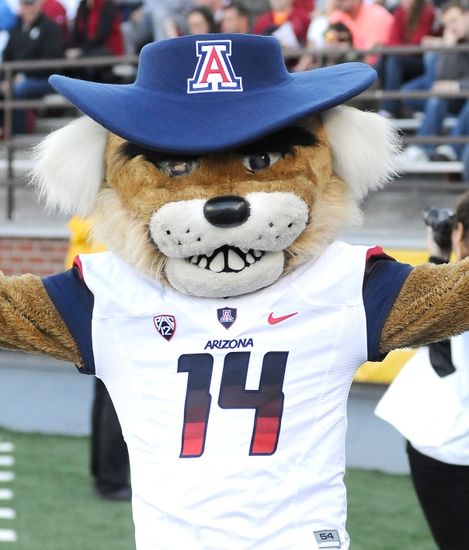 Oct 25, 2014; Pullman, WA, USA; Arizona Wildcats mascot, Wilbur, looks on during a game against the Washington State Cougars during the first half at Martin Stadium. Mandatory Credit: James Snook-USA TODAY Sports