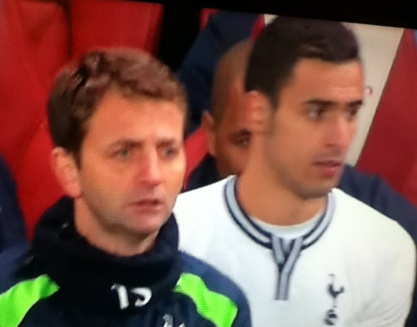 Tim Sherwood and Nacer Chadli [Photo: Alan Hill]