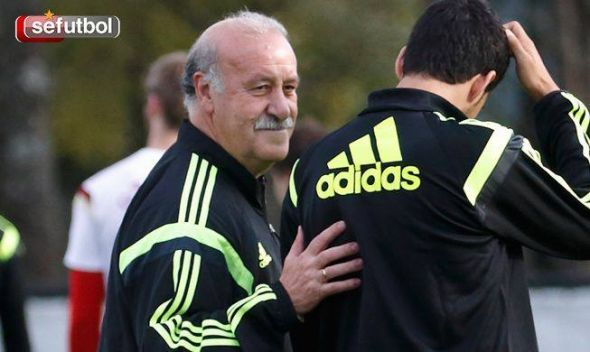 Always stubborn and pragmatic, Vicente Del Bosque was a large part of the problem that could have been solved long before the tournament began.