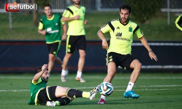 Cesc Fabregas (right) finally deserves the key role in the Spanish side that has eluded him for years.