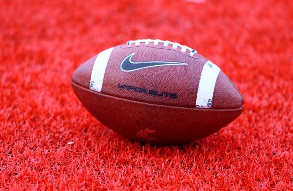 Dec 21, 2013; Albuquerque, NM, USA; Detailed view of a Washington State Cougars logo on an official Nike football on the field during the game against the Colorado State Rams during the Gildan New Mexico Bowl at University Stadium. Mandatory Credit: Mark J. Rebilas-USA TODAY Sports