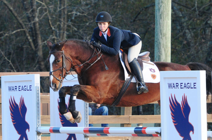 Greg Williams Auburn Equestrian A Stride Ahead Of The Rest