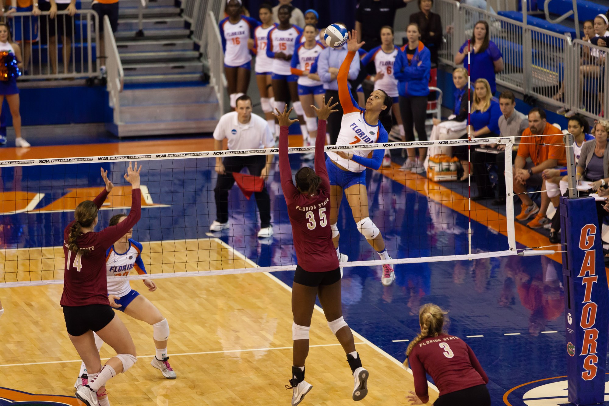 Gabby Mallette skies over the net for the Florida Gators. Photograph by Matt Pendleton.