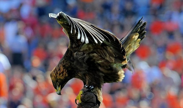 Q&A With FanSided's Auburn Site - Fly War Eagle
