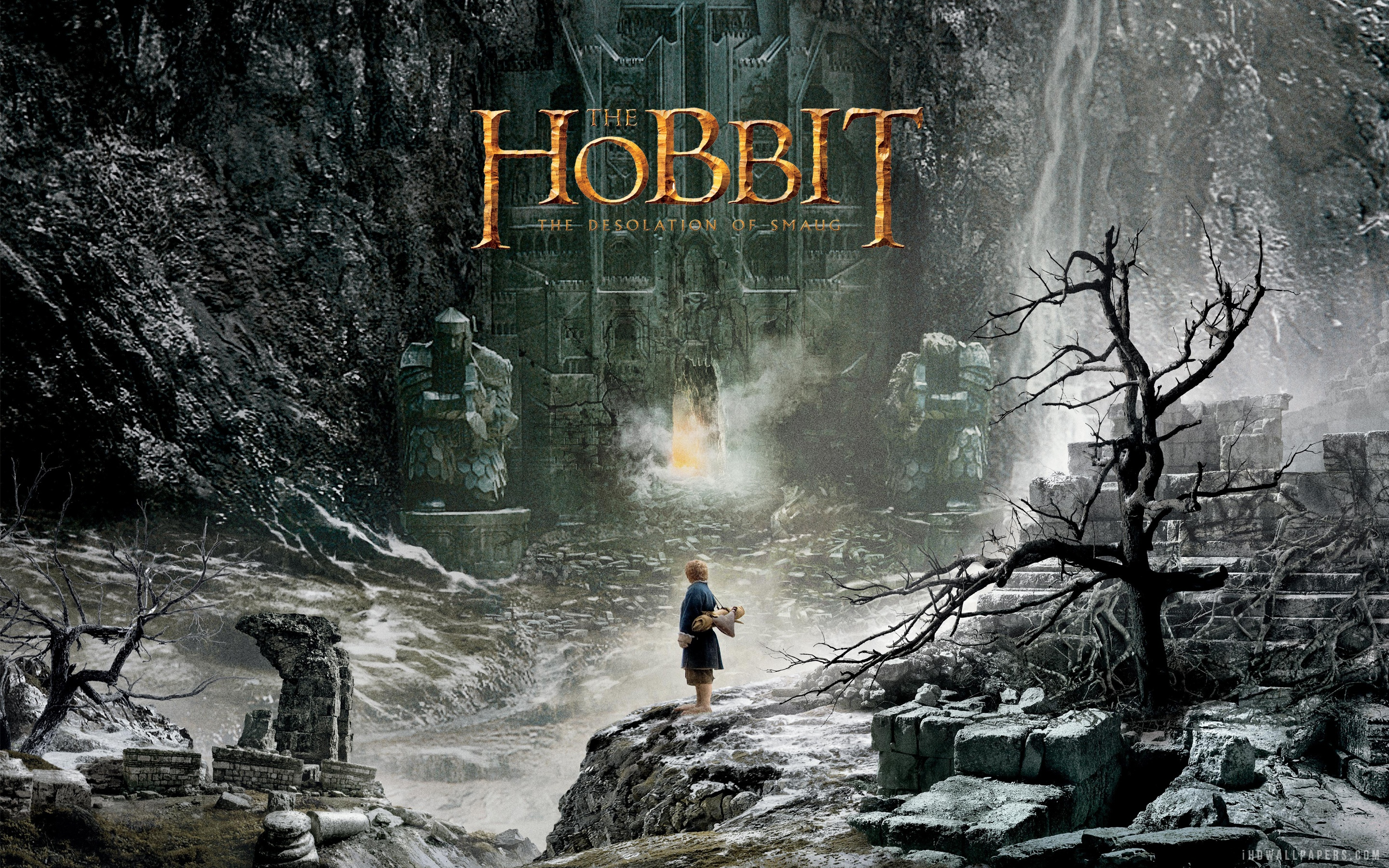 http://cdn.fansided.com/wp-content/blogs.dir/229/files/2013/10/The-Hobbit-Desolation-of-Smaug-Poster.jpg