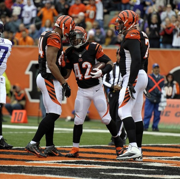 Dec 22, 2013; Cincinnati, OH, USA; Cincinnati Bengals running back BenJarvus Green-Ellis (42) is met by his teammates after running in a touchdown during the first quarter of the game against the Minnesota Vikings at Paul Brown Stadium. Mandatory Credit: Marc Lebryk-USA TODAY Sports