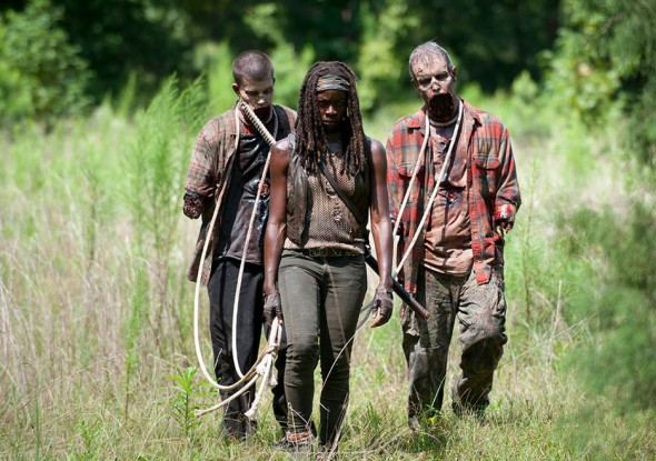 "Danai Gurira as Michonne in Season 4, Episode 9 of ""The Walking Dead."" Photo Credit: Gene Page/AMC"