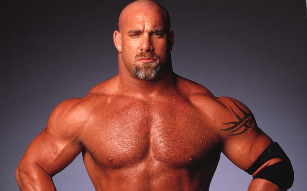 bill goldberg 2017