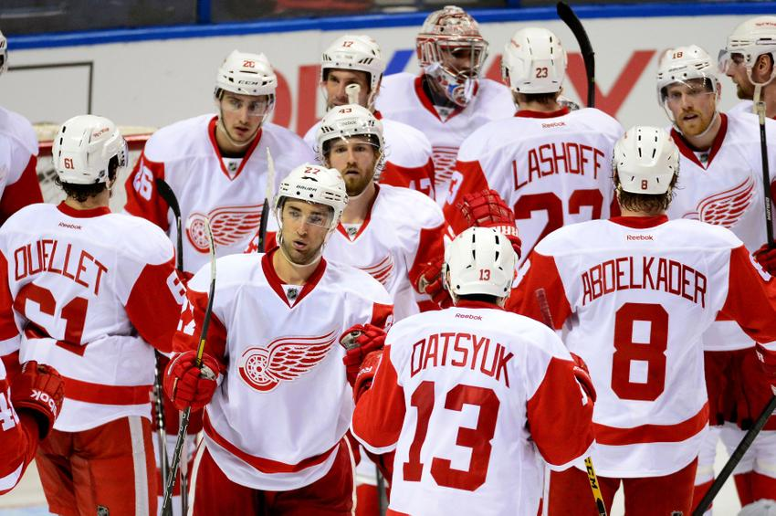Image result for 2014 detroit red wings
