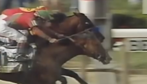 Victory Gallop's last stride gave him the 1998 Belmont Stakes.