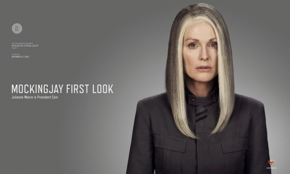 "Julianne Moore as President Coin in ""The Hunger Games: Mockingjay Part 1."" Photo Credit: Lionsgate"