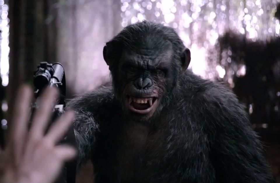 Koba takes aim in new clip from Dawn of the Planet of the Apes