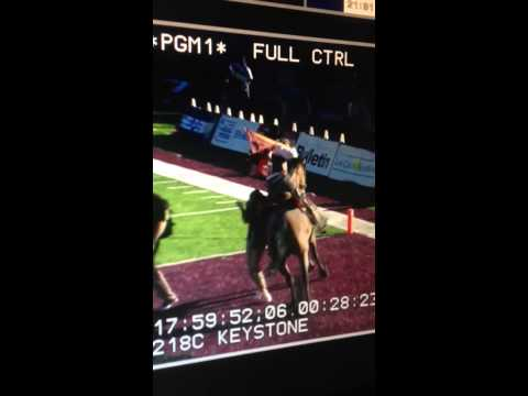 New Mexico State's horse knocked over an unsuspecting woman