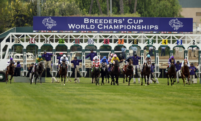 breeders cup results today online betting apps