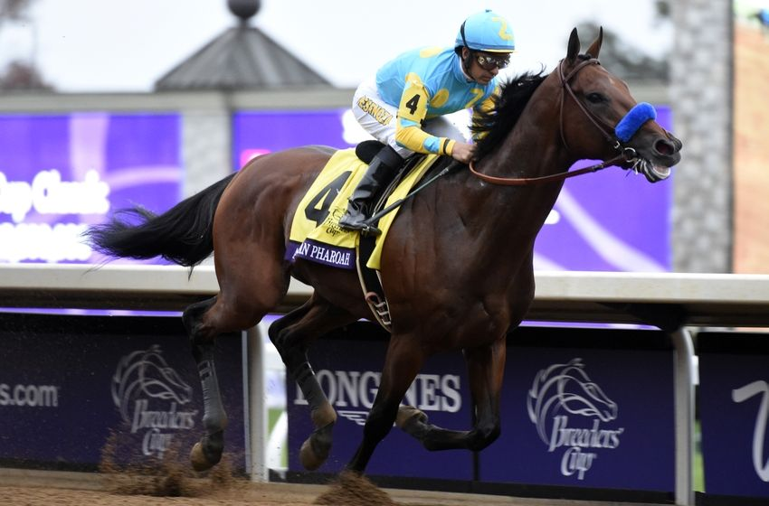 Breeders Cup 2015 Full Race Video Highlights