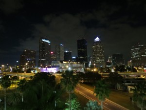 Tampa Landscape By: Dolly Dolce