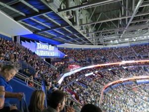 2013 Home Opener VS Washington Capitals by: Dolly Dolce