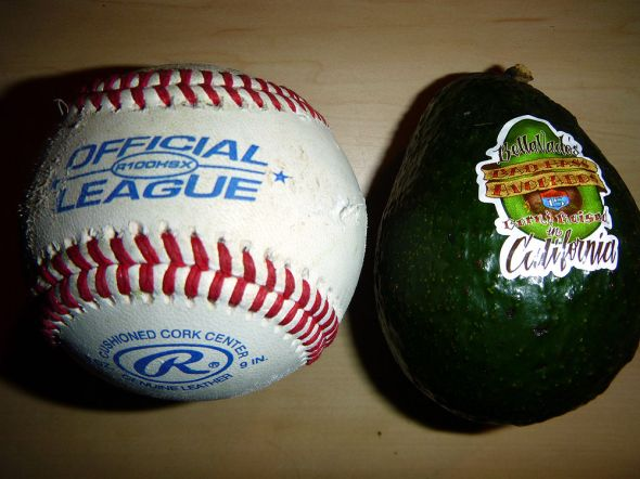 Baseball vs. Avocado.