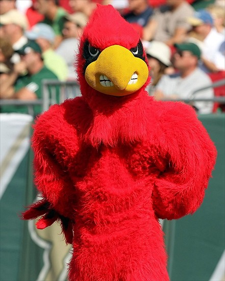 November 25, 2011; Tampa, FL, USA; Louisville Cardinals mascot during the second half against the South Florida Bulls at Raymond James Stadium. Louisville won 34-24. Mandatory Credit: Kim Klement-USA TODAY Sports