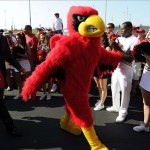 Sep 7, 2013; Louisville, KY, USA; The Louisville Cardinals mascot leads the team to the stadium during the Card March before the game against the Eastern Kentucky Colonels at Papa John