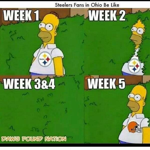 Steelers fans in Ohio