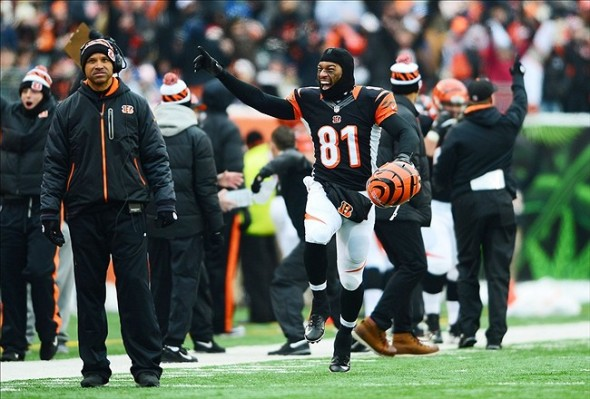 Dec 8, 2013; Cincinnati, OH, USA; Cincinnati Bengals tight end Alex Smith (81) reacts after a call was reviewed for a touchdown during the second quarter against the Indianapolis Colts at Paul Brown Stadium. Mandatory Credit: Andrew Weber-USA TODAY Sports
