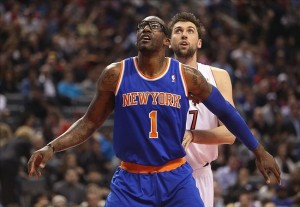 Feb 22, 2013; Toronto, ON, Canada; New York Knicks forward Amar