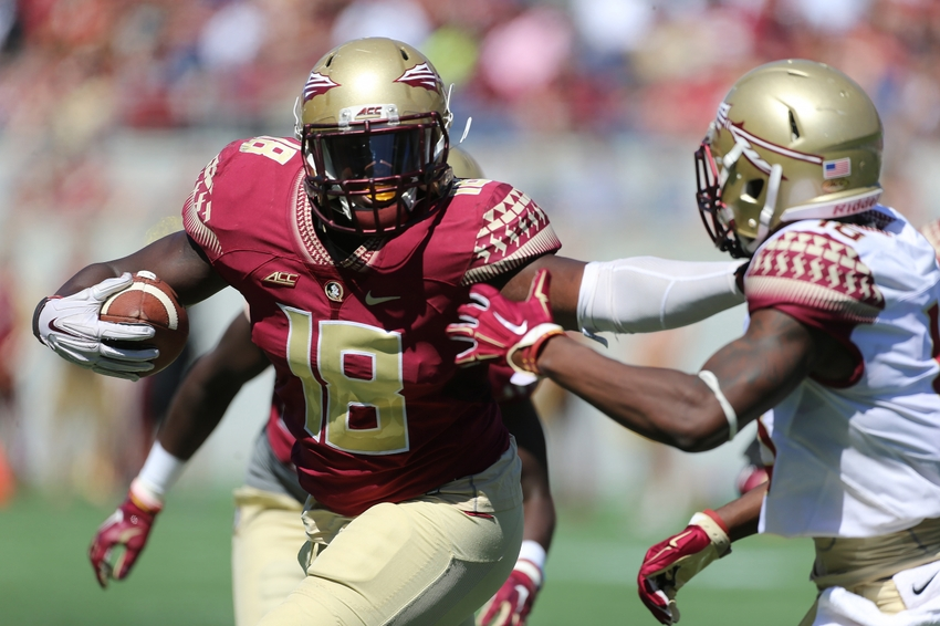 florida state football - photo #29
