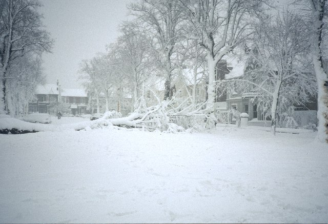 After_a_heavy_snow_storm_-_geograph.org.uk_-_90391