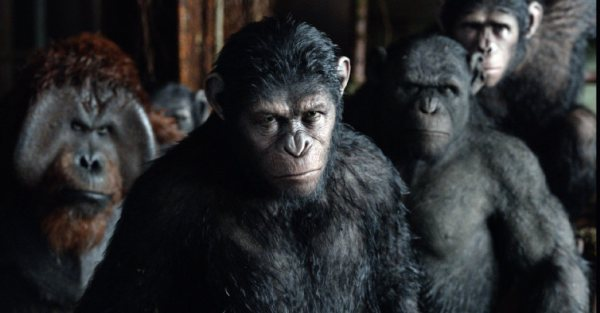 Ascent of the Planet of the Ghee Watch Dawn of the Planet of the Apes Online Free 600x313 Movie-index.com