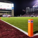 The Grass of Davis Wade Stadium