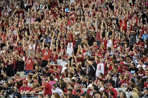 Oct 6, 2013; Phoenix, AZ, USA; Arizona Cardinals fans do the wave during the second half against the Carolina Panthers at University of Phoenix Stadium. Mandatory Credit: Matt Kartozian-USA TODAY Sports