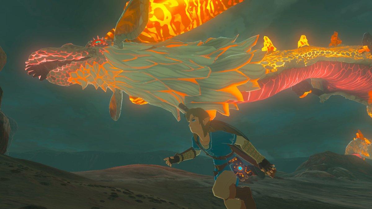 Legend Of Zelda Breath Of The Wild Dog Petting