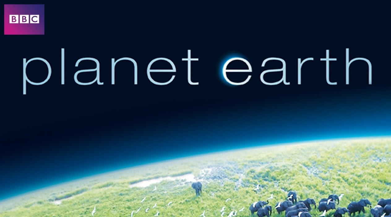 50 Best Documentaries on Netflix: Planet Earth