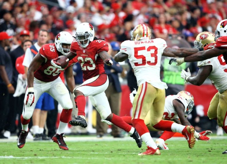 Chris-johnson-nfl-san-francisco-49ers-arizona-cardinals-768x0