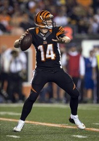 Andy Dalton. Greg Bartram-USA TODAY Sports photograph
