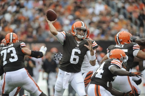 Brian Hoyer. Ken Blaze-USA TODAY Sports photograph