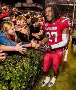 South Carolina Gamecocks cornerback Victor Hampton (27) celebrates with fans following their 31-17 win over the Clemson Tigers. Jeff Blake-USA TODAY Sports