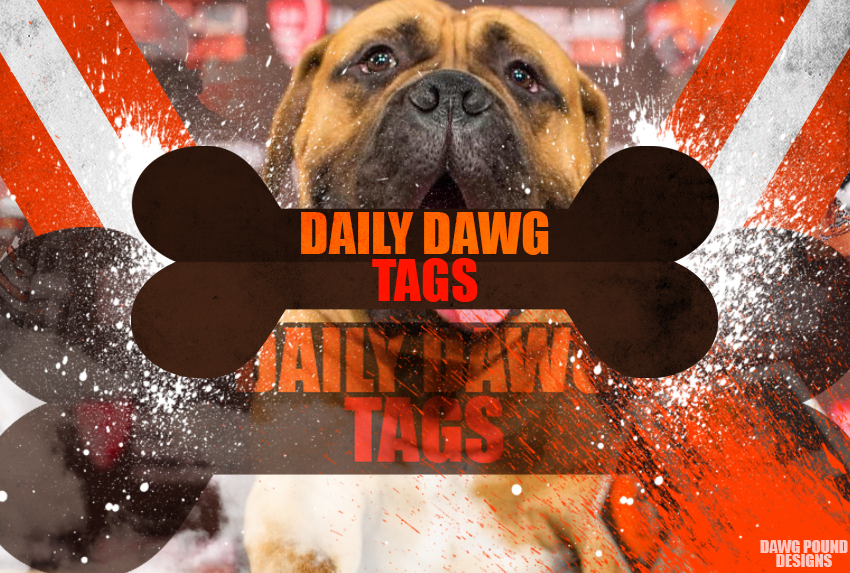 Daily-dawg-tags