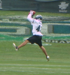 Rookie safety Kurt Coleman makes a leaping catch during drills Sunday afternoon.